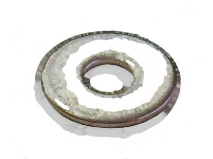 Picture of Flat washer  8,5x24x2 mm INOX for Wascator Part# 734116441