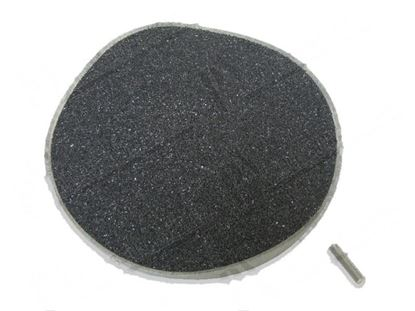 Picture of Abrasive plate for veg. PL4/8-CD4/8 for Zanussi, Electrolux Part# 0HD038, 20599
